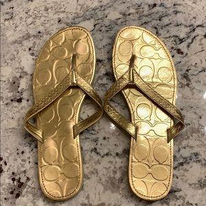 Coach Gold Flip Flops Size 7.5 never worn